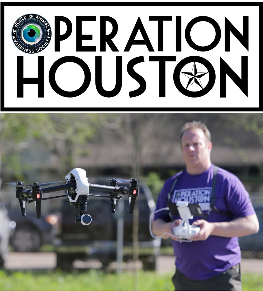 Drones Will Be Used to Track Stray Dogs in Houston, TX